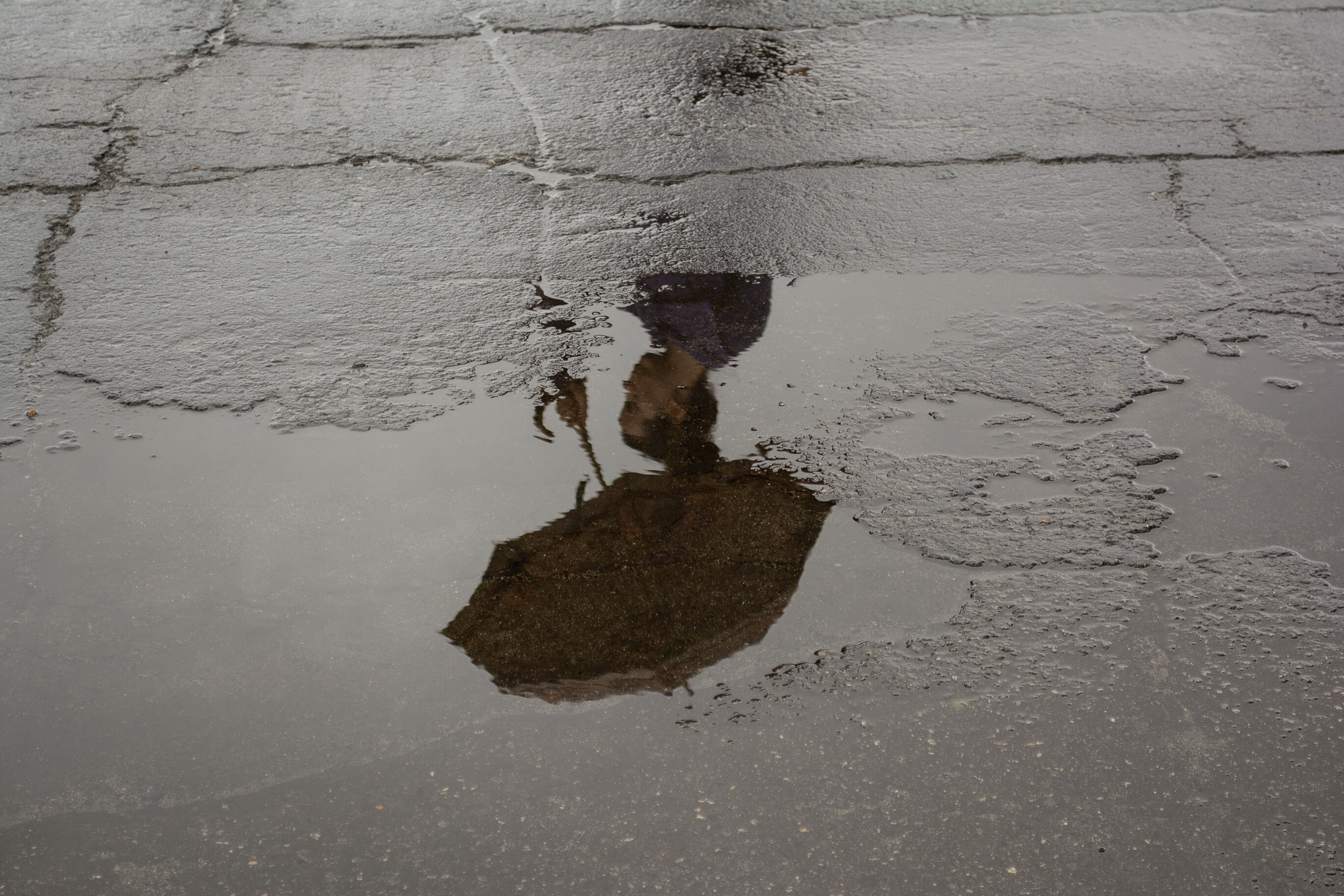 umbrella puddle reflection